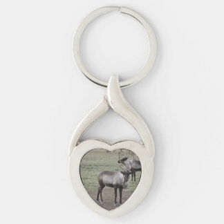 A couple Reindeer in a field on a caribou farm Silver-Colored Twisted Heart Keychain