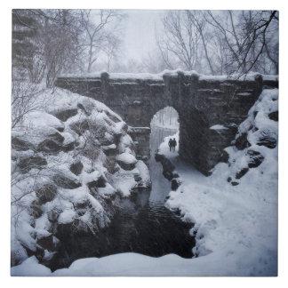 A Couple Walking Under a Snowy Glen Span Arch Tiles