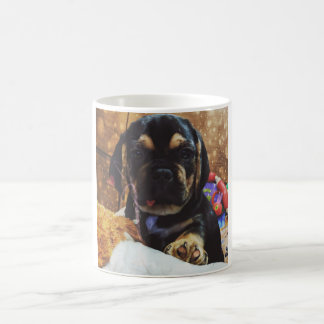 A cup of puggle love