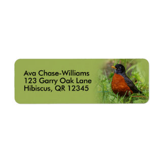 A Curious and Hopeful American Robin Return Address Label