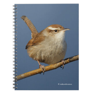 A Curious Bewick's Wren in the Tree Notebook