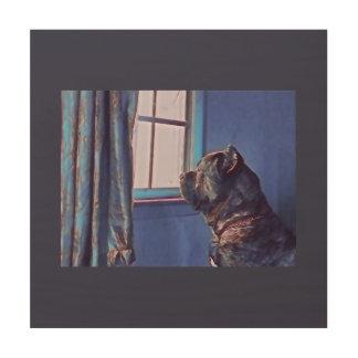 A Curious Canine Wood Print