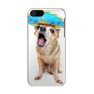 A Cute Chihuahua In A Halloween Costume Incipio Feather® Shine iPhone 5 Case