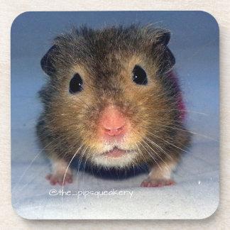 A Cute Nose! Coaster
