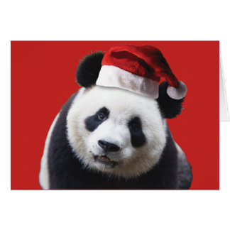A Cute Panda Bear wearing a Santa Claus Hat Card