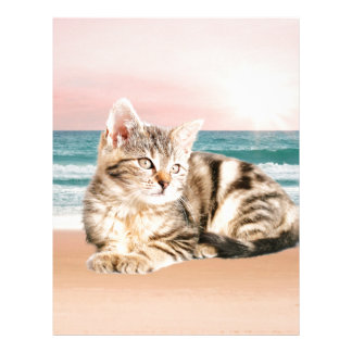 A Cuter Striped Cat Sitting on Beach with sunset Customized Letterhead