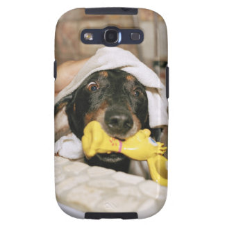 A dachshund being bathed. samsung galaxy s3 cases