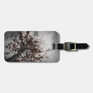 A Dark Fall Tree with Burgundy Leaves & a Dark Sky Luggage Tag