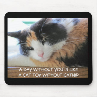 A Day without you Mouse Pad
