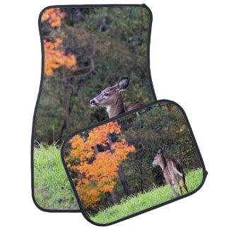 A Deer in the Field in Autumn Car Mat