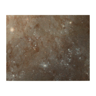 A Detailed Look at Spiral Galaxy M101 Wood Prints