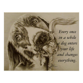A Dog Changes Everything - Dog Drinking Poster
