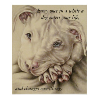 A Dog Changes Everything: Pit Bull Poster