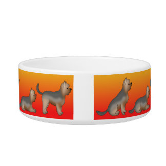 A dog dish for Yorkshire Terrier