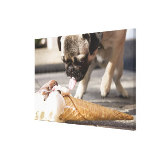 A dog eating an ice cream from a pavement stretched canvas print