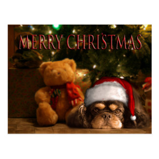 A Dog Is For Life Not Just For Christmas Postcard