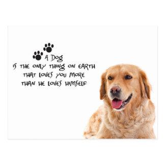 A Dog Loves You More Postcard