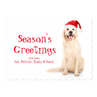 A Dog Wearing A Christmas Hat Card