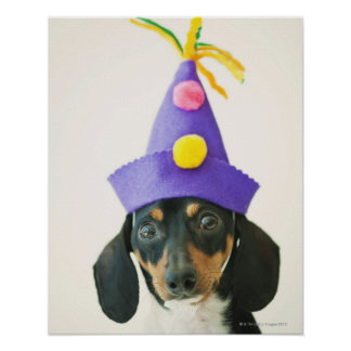 A dog wearing a funny hat poster