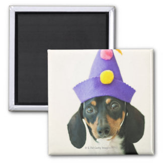 A dog wearing a funny hat square magnet