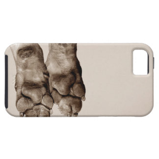 A dogs paws iPhone 5 cover