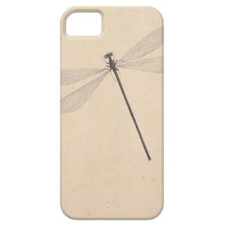 A Dragonfly, by Nicolaas Struyk, early 18th c. iPhone 5 Case