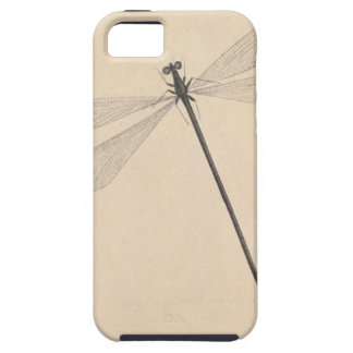 A Dragonfly, by Nicolaas Struyk, early 18th c. iPhone 5 Covers
