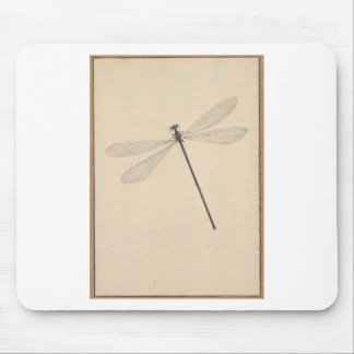 A Dragonfly, by Nicolaas Struyk, early 18th c. Mouse Pad