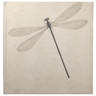A Dragonfly, by Nicolaas Struyk, early 18th c. Napkin