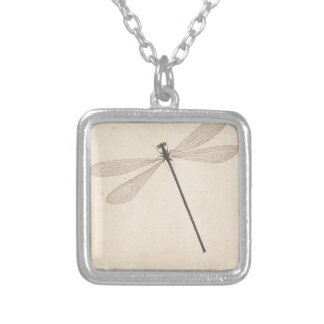 A Dragonfly, by Nicolaas Struyk, early 18th c. Silver Plated Necklace