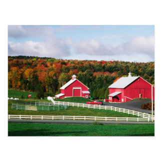 A farm in Vermont near Peacham. RELEASE Postcard