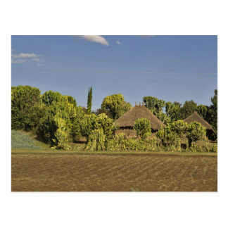 A farmed field in front of thatched roof houses postcard