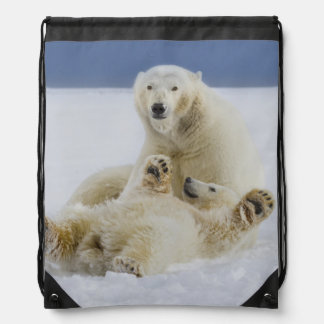 A female polar bear and her cub play in the snow cinch bags