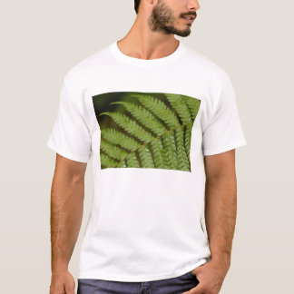 A fern detail, from Mindo Cloud Forest, T-Shirt