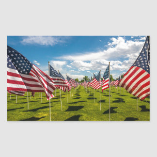 A field of American Flags on V-day Remembrance