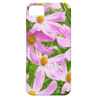 A Field Of Pink Cosmos iphone 5 Case