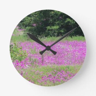 A field of pink spring wildflowers round clock