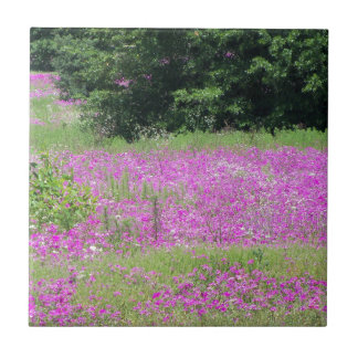 A field of pink spring wildflowers tile