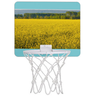 a field of yellow rapeseed flowers  basketball mini basketball hoop