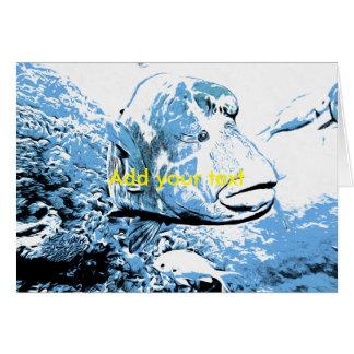 A fish called Wally Card
