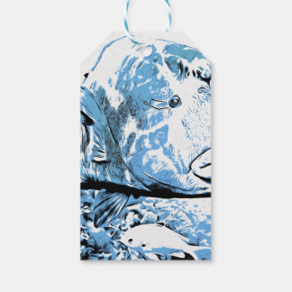 A fish called Wally Pack Of Gift Tags