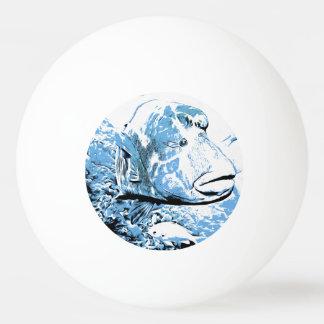 A fish called Wally Ping Pong Ball