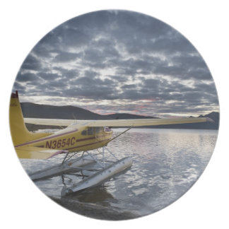 A floatplane in scenic Takahula Lake 2 Party Plates