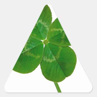 A Four Leaf Clover Triangle Sticker