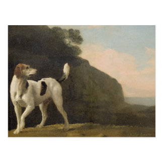 A Foxhound, c.1760 (oil on paper laid on board) Postcard
