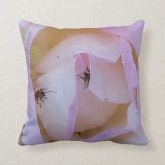 a fragrant rose with bugs throw pillow
