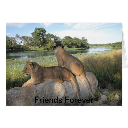 A Friendship Card
