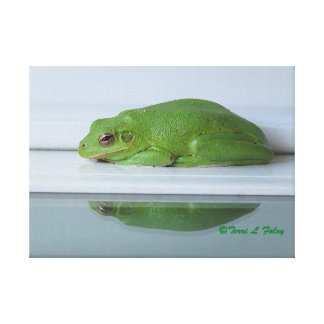 A Frog's Reflection Canvas Print