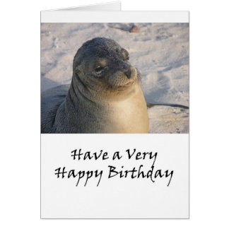 A Galapagos Seal Birthday Card