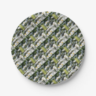 A Garden of White Daisy Flowers Paper Plate